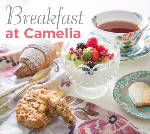 Breakfast at Camelia